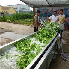 蔬菜水果气泡清洗机 全自动水果清洗设备