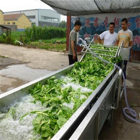 果蔬气泡清洗机甘蔗清洗设备