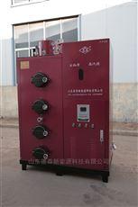 DS-300厂家热销生物质蒸汽发生器