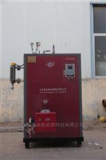 小型燃油蒸汽发生器