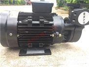 奧蘭克WM-033-200高溫模溫機200度熱油泵