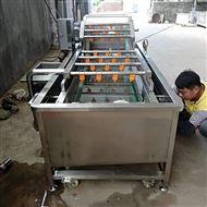 小油菜清洗机-净菜加工流水线设备