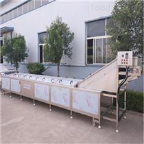 SDN-800杏鲍菇蒸煮机