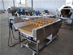 SDN-800专业酱菜加工设备