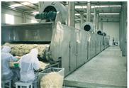 ZG系列振动流化床干燥机