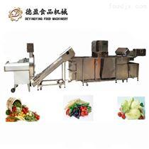 DY-3500东莞德盈叶菜清洗加工生产线