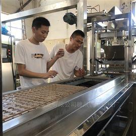 HQ-TG150糖果设备 糖果机械 全自动软糖浇注生产线