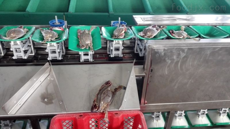 大闸蟹分选机 河蟹重量分选设备厂家