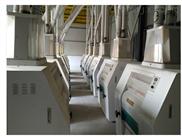 200吨面粉机成套设备