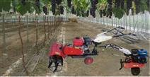 葡萄地小型松土除草機