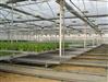 温室自动化育苗苗床