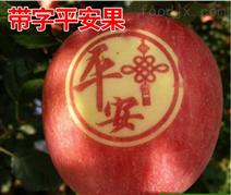 甘肃庆阳市合水县平安苹果表面图案印字机