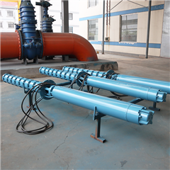 QZB600大口径斜拉式潜水轴流泵