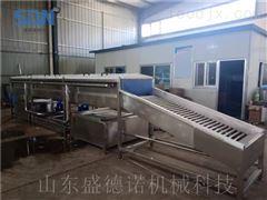 SDN-1000新型速冻玉米加工设备