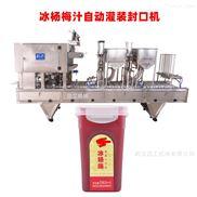 全套楊梅汁飲料生產線設備 飲料設備廠家