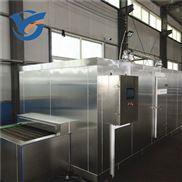 食品冷冻设备 隧道式速冻机 水果快速冷冻