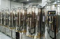 银色法兰款啤酒发酵罐