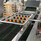 QX-6全自動凈菜加工設備水果蔬菜清洗線