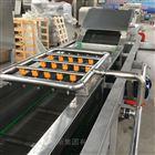 QX-6水果蔬菜清洗線