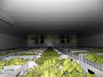 500吨香蕉水果气调库建造需要多少钱?