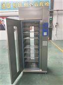 医用干燥柜300L双门智能可移动快速干燥箱