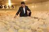 安装一个1000吨金针菇保鲜冷库大概多少钱?