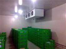 1500立方红薯粉丝冷库安装总投资多少?