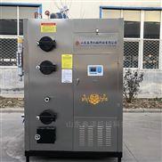 小型锅炉蒸汽发生器