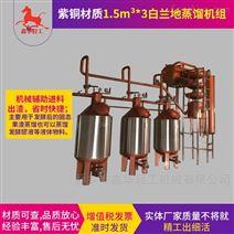 電加熱石榴白蘭地蒸餾機組好質量選鑫華輕工