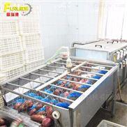 果蔬 多功能蔬菜清洗机 大型洗菜机连续式