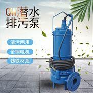 3KW潜水排污泵2寸便携式潜水泵