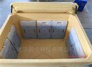 大型水产品/海产品/医药保温保鲜周转箱660L