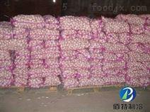 大蒜冷庫儲存方法介紹及造價
