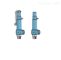 阀门Niezgodka safety valve 67型