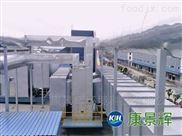 废气处理-VOC工业废气净化设备