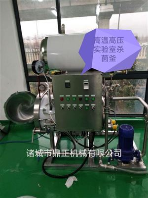 500型号DZ 供应高温高压喷淋式实验室杀菌釜厂家