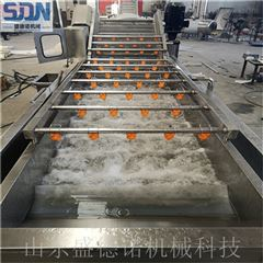 SDN-800净菜加工生产线价格