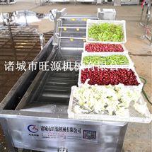 厂家直供多功能豆角喷淋式清洗机