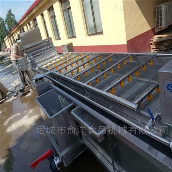 厂家生产全自动莲藕高压喷淋气泡清洗机