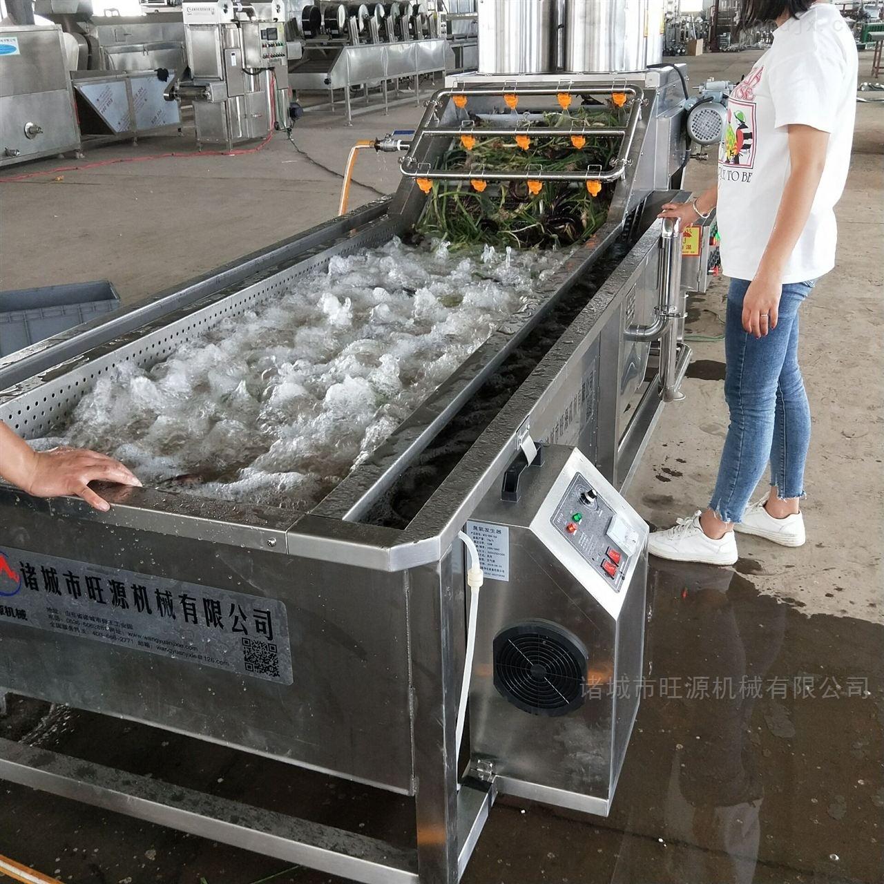 *红薯清洗机/果蔬连续式清洗设备