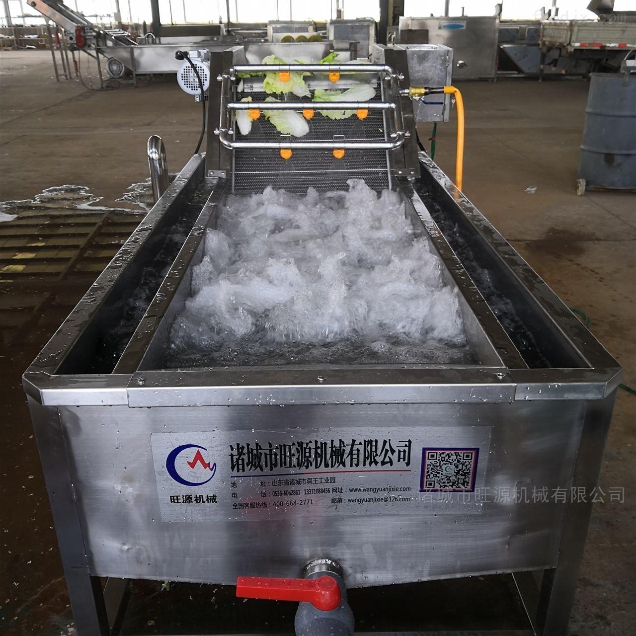 菠菜冲浪式清洗机/高压气泡喷淋清洗设备