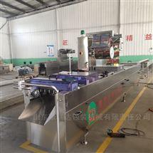 DZ-420千叶豆腐连续拉伸包装机 豆腐抽真空机