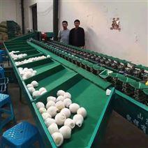 台湾梨種植戶們推薦使用不傷果的梨選果機