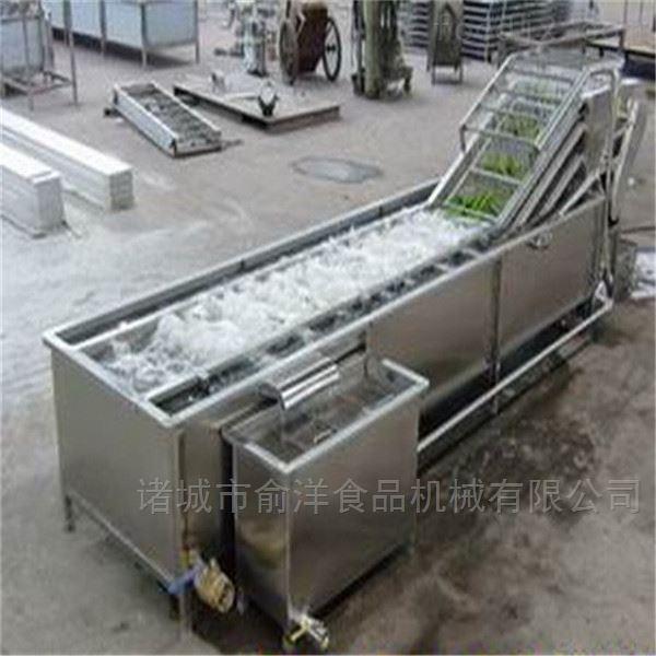 厂家供应全自动芹菜高压喷淋气泡清洗机