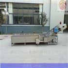 FX800定制土豆丝气泡清洗机