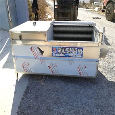 MC-1000辽宁花生果毛刷清洗机生产厂家一小时500kg