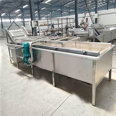 MCQXJ-4气浴式蔬菜清洗机支持来料试机