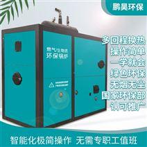 浴池供暖锅炉厂家