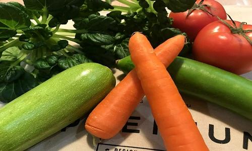 """加快蔬菜生產""""機器換人"""" 提升蔬菜生產機械化水平"""