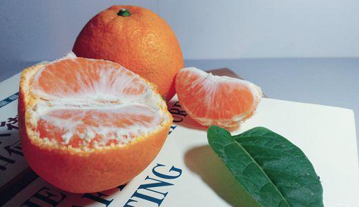 市场风险抵抗力低 柑橘产业需走深加工发展之路